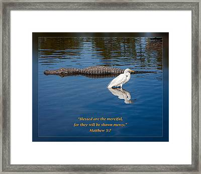 Matthew 5 7 Framed Print by Dawn Currie