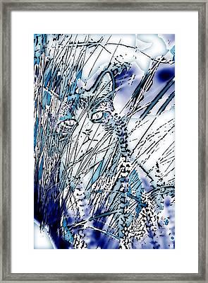 Framed Print featuring the photograph Matuvu by Selke Boris
