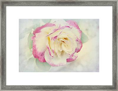 Framed Print featuring the photograph Maud by Elaine Teague