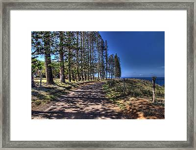 Maui Back Roads Framed Print