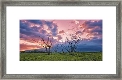 Maui Mudflats Framed Print by Hawaii  Fine Art Photography