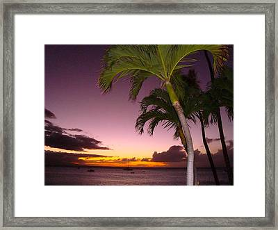 Framed Print featuring the photograph Maui Seascape And Palms by Tamara Bettencourt