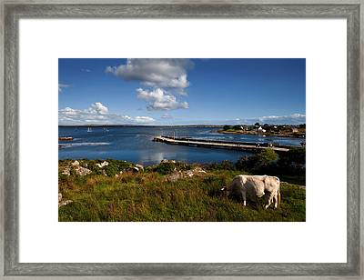 Maumeen Quay, Gorumna Island Framed Print by Panoramic Images