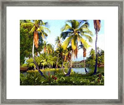 Mauna Lani Fish Ponds Framed Print
