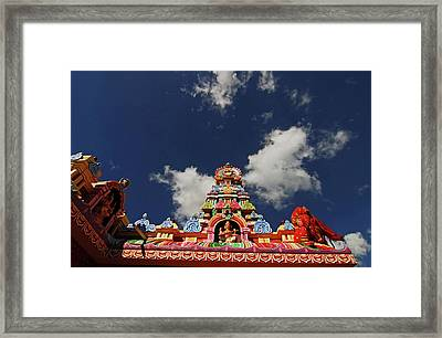 Mauritius, Bambou, Low Angle View Framed Print by Anthony Asael