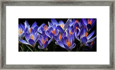 Mauve Framed Print