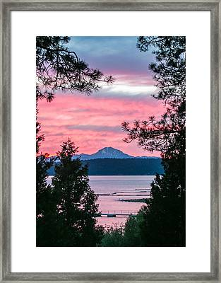 Mauve Magnificence Framed Print by Jan Davies