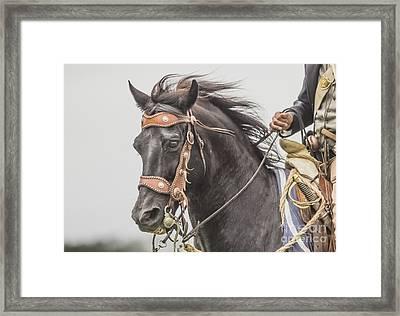 Max Framed Print by Kim Henderson