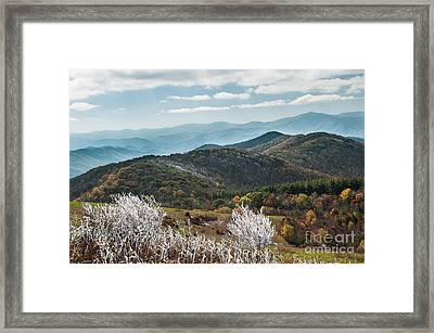 Framed Print featuring the photograph Max Patch In Appalachian Mountains by Debbie Green
