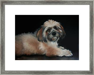 Maxi Framed Print by Cynthia House