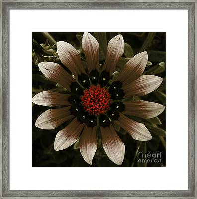 Framed Print featuring the photograph May May  by Janice Westerberg