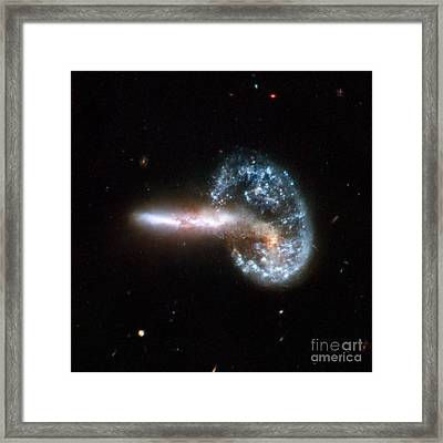 Mayalls Object Arp 148 Framed Print