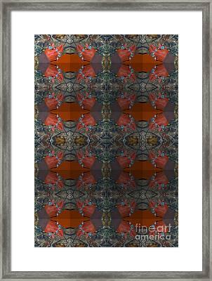 Mayan Rings Framed Print by Tina M Wenger