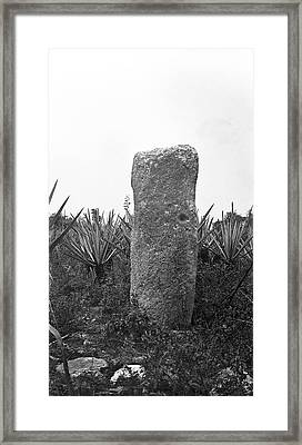 Mayan Stele Framed Print by American Philosophical Society