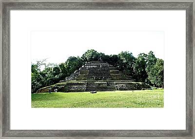 Mayan Temple Belize Lamanai Framed Print
