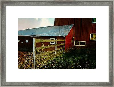 Maybe Framed Print by Diana Angstadt
