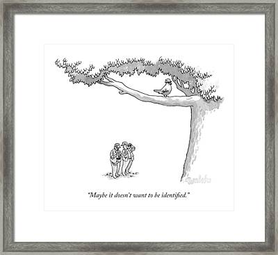 Maybe It Doesn't Want To Be Identified Framed Print by Liam Wals