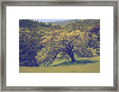 Maybe It's Better This Way Framed Print by Laurie Search