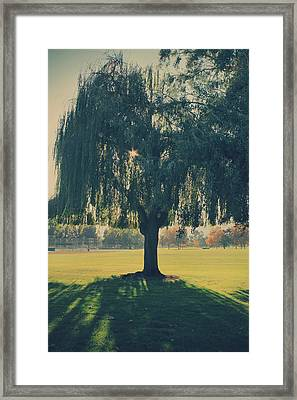 Maybe We'll Find It Someday Framed Print by Laurie Search