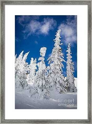 Mazama Frost Framed Print