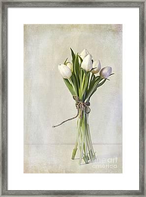 Mazzo Framed Print by Priska Wettstein