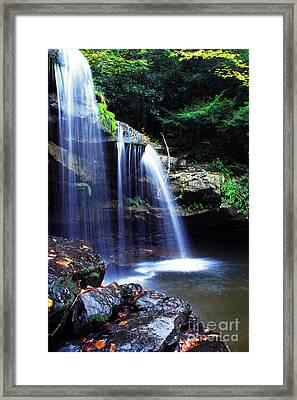 Mccoy Falls Birch River Framed Print