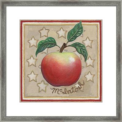 Mcintosh Apple Two Framed Print by Linda Mears