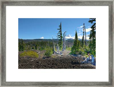 Mckenzie Pass Scenic View Framed Print by John Kelly