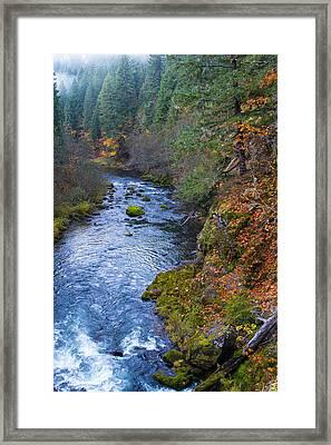Mckenzie River Framed Print