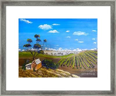 Mclarren Vale Vine Yards Framed Print