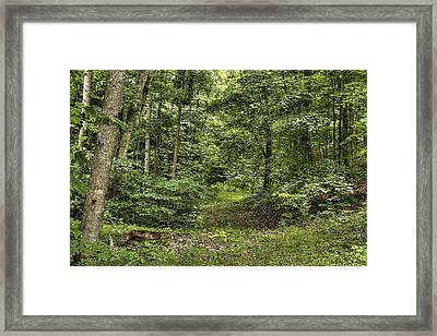 Mcleod's Serenity Framed Print by Honour Hall