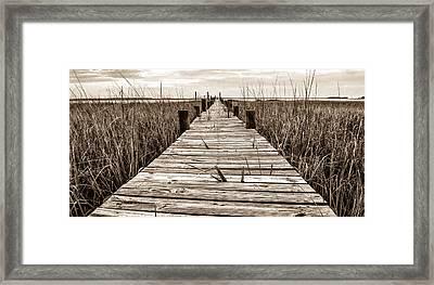 Mcteer Dock - Sepia Framed Print