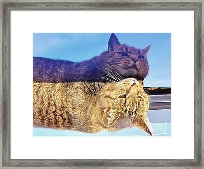 Me And Me Framed Print by Judy Via-Wolff