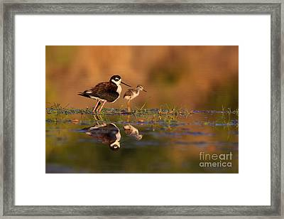 Me And My Peep Framed Print by Ruth Jolly