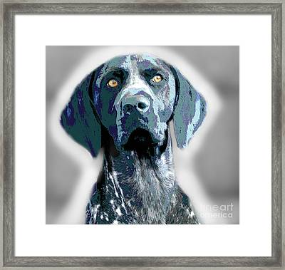 Me Good Dog Framed Print by Jo Collins