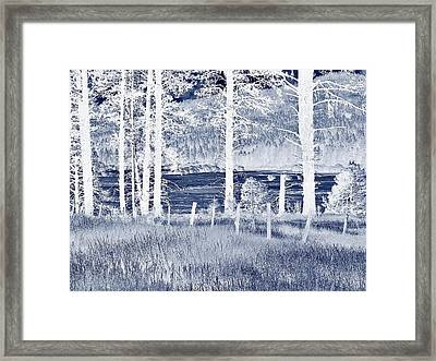 Meadow 9 Framed Print by Larry Campbell