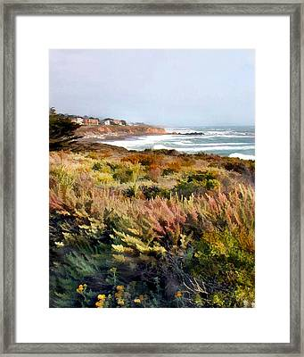 Meadow At Ocean Coast Framed Print by Elaine Plesser