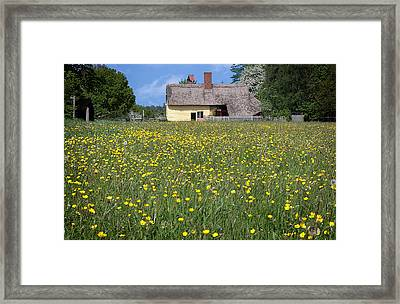 Meadow Cottage Framed Print by Stephen Norris