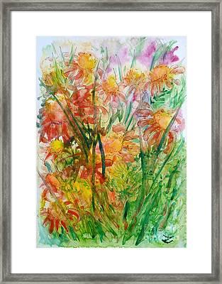Meadow Flowers Framed Print by Zaira Dzhaubaeva