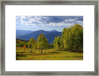 Meadow Highlights Framed Print by Chad Dutson