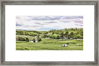 Meadow II Framed Print by Chuck Kuhn