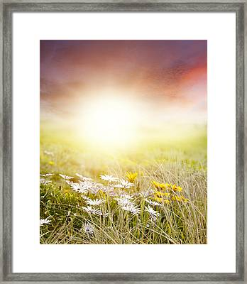 Meadow Framed Print by Les Cunliffe