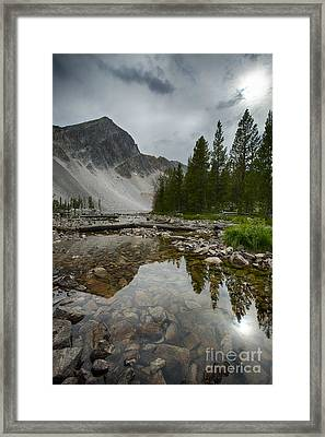 Meadow Mood Framed Print