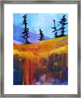Meadow Mountain Framed Print by Nancy Merkle