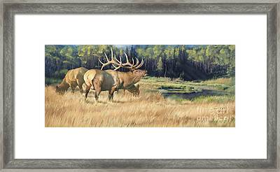 Meadow Music Framed Print