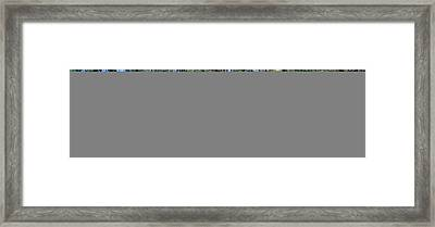 Meadow Of Purple Flowers, California Framed Print by Panoramic Images