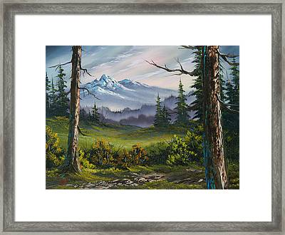 Meadow View Framed Print by C Steele