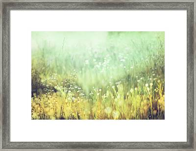 Meadowland Framed Print by Amy Tyler