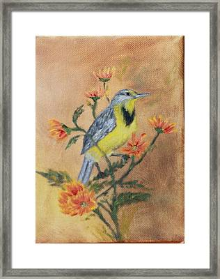 Meadowlark Framed Print
