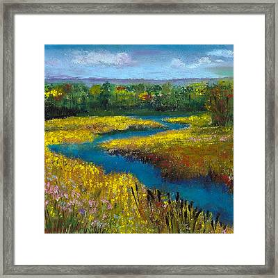 Meandering Stream Framed Print by David Patterson